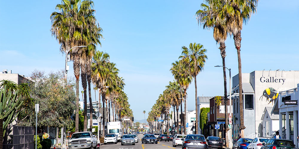 """The Insider's Guide to Abbot Kinney Boulevard, """"The Coolest Block in America"""""""